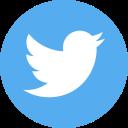 1456229130_twitter